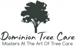 Dominion Tree Care