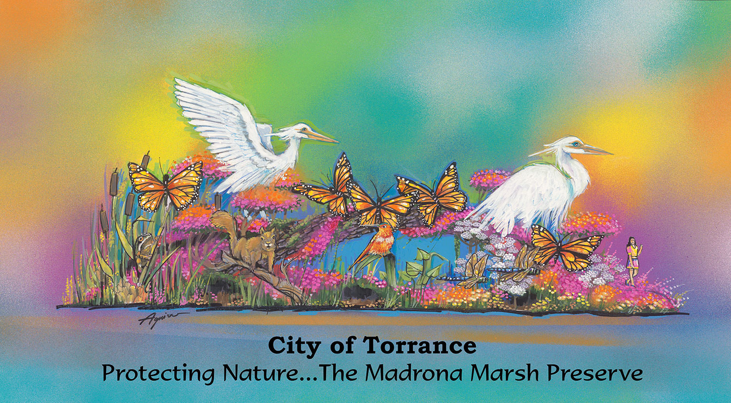 """Protecting Nature ... The Madrona Marsh Preserve"""