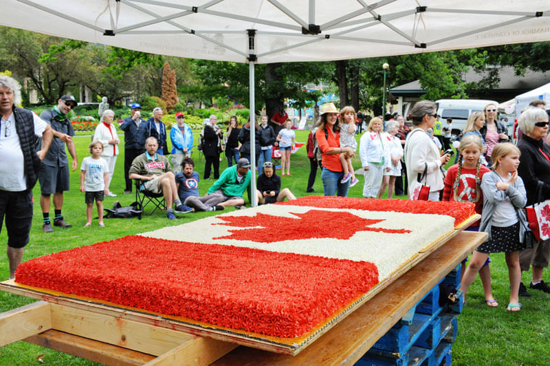 canada day lakeside park cake