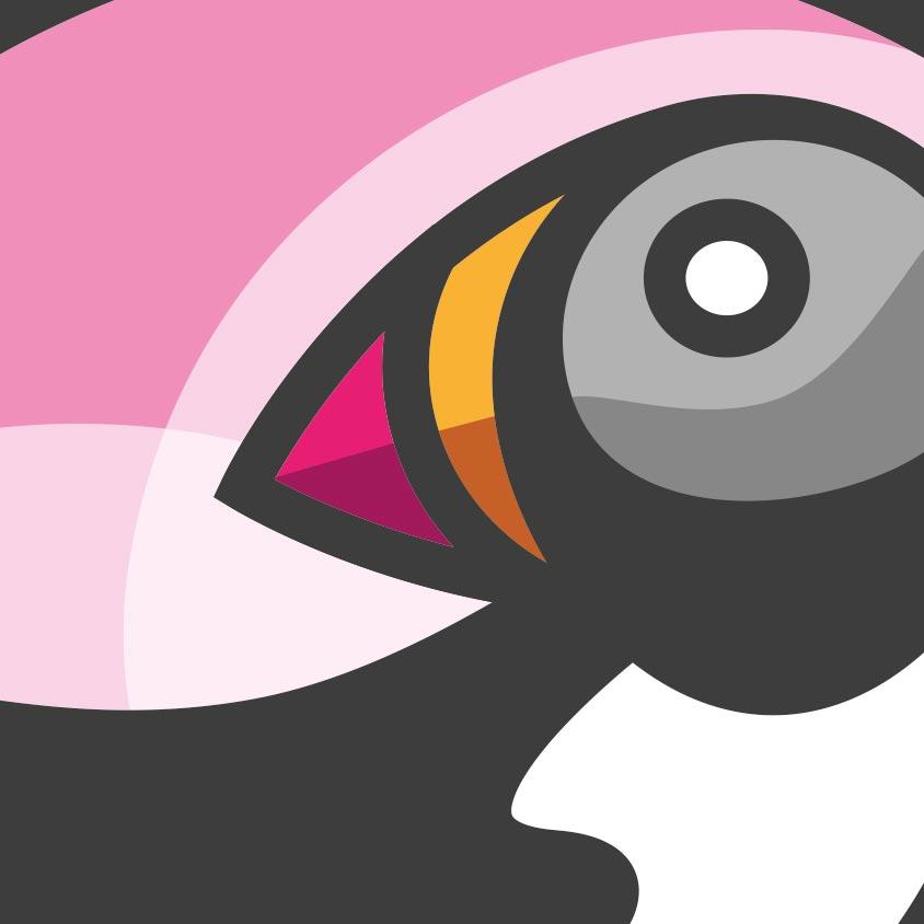 Puffin Logo Illustration