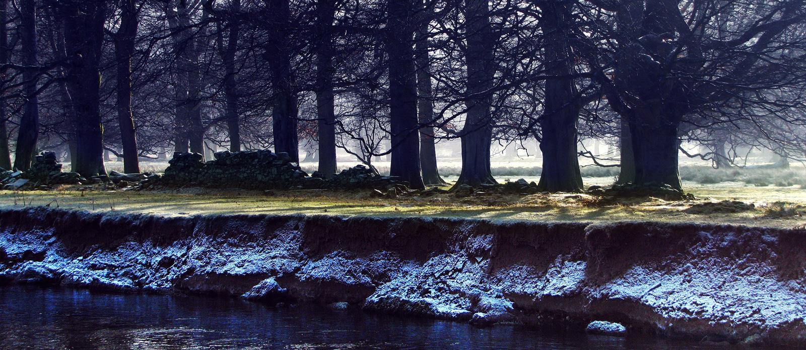 John Hamlin Photography River Tweed
