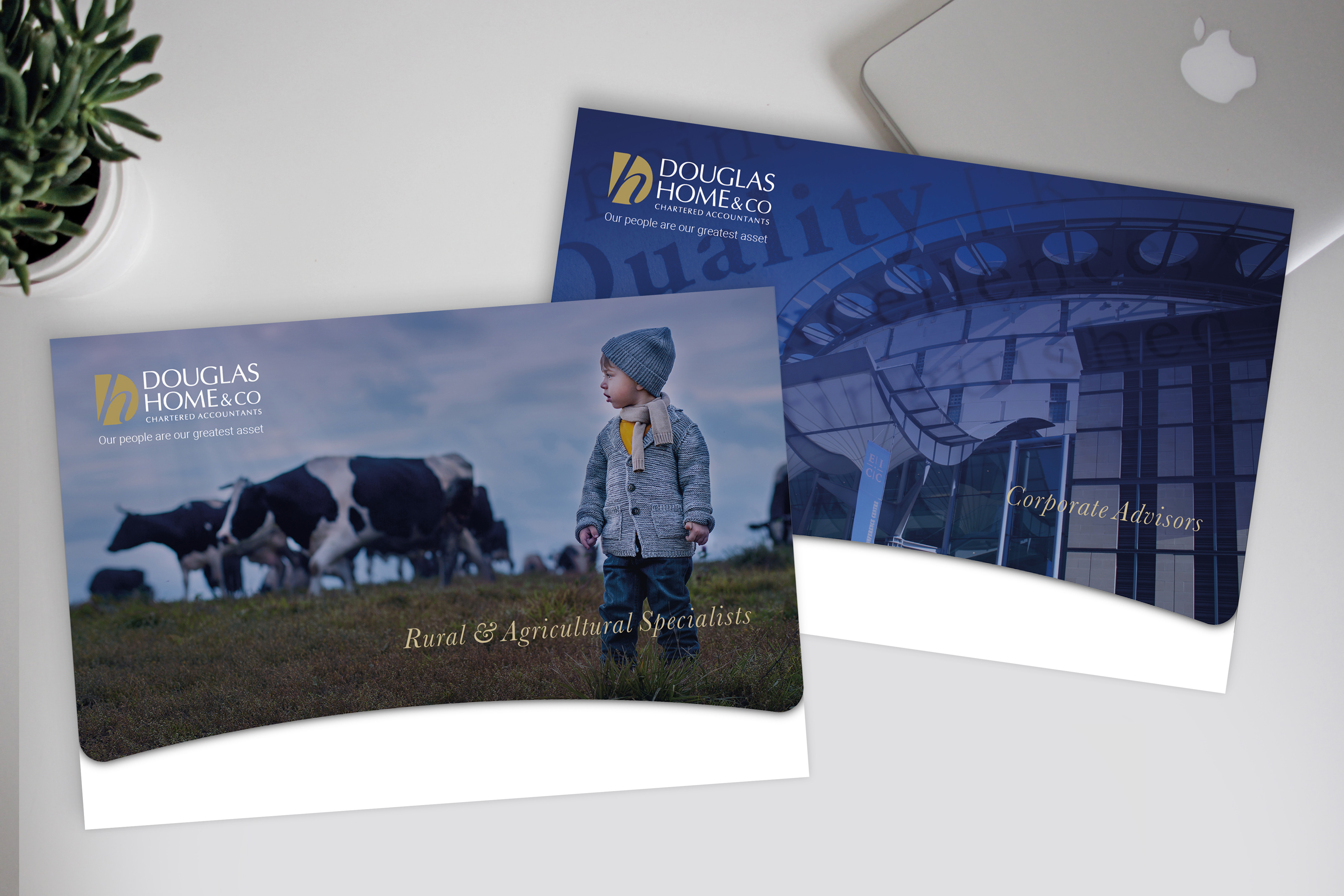 Douglas Home & Co Chartered Accountants Brochure and Folder Design
