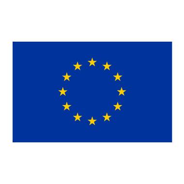 GDPR Flag