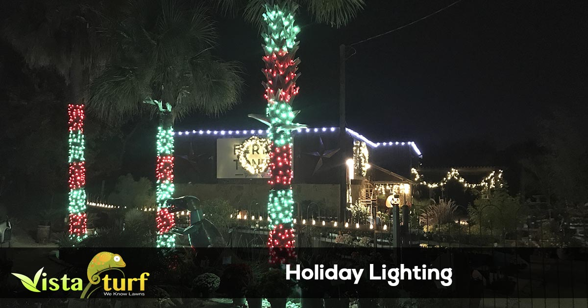 Holiday Light Installation Services
