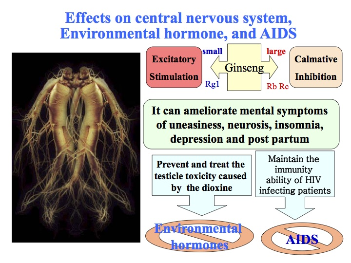 Fermented ginseng effects on CNS environmental hormone and AIDs diagram