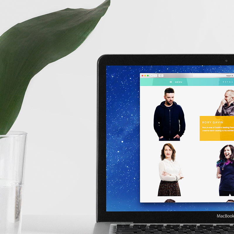 Raygun Website Design