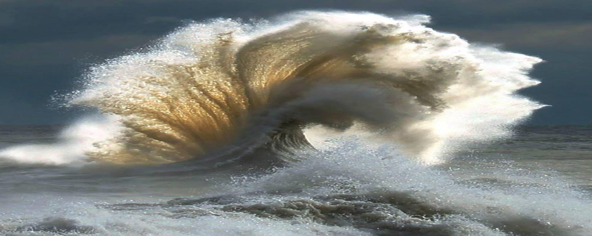 Exploring Wave Motion