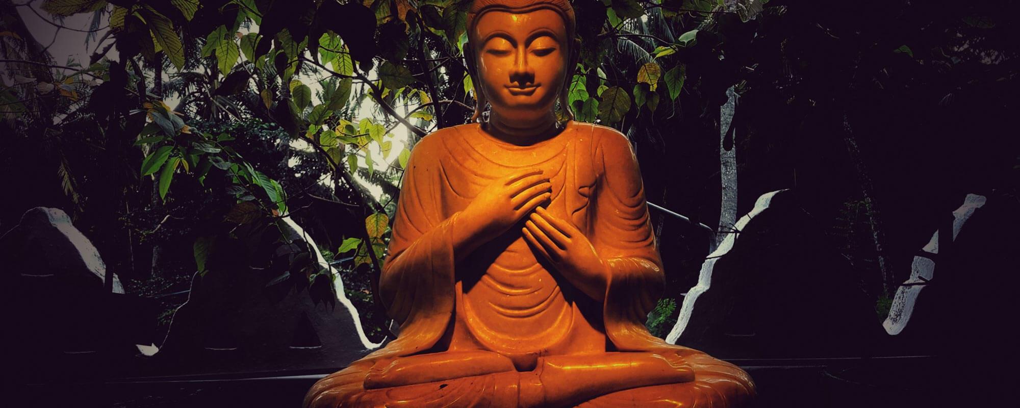 Fall Continuum 2021: Dharma Dives