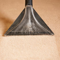 Jacksonville Carpet & Grout Cleaning/Sealing