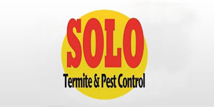 solo termite and pest control