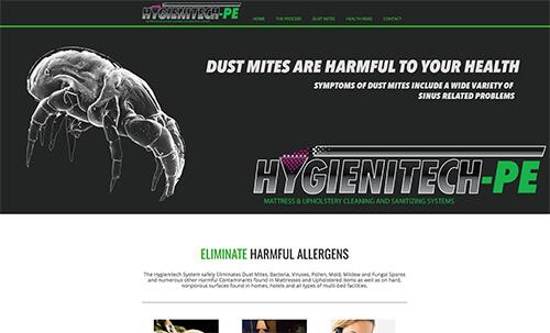 screenshot of just jakes web design portfolio