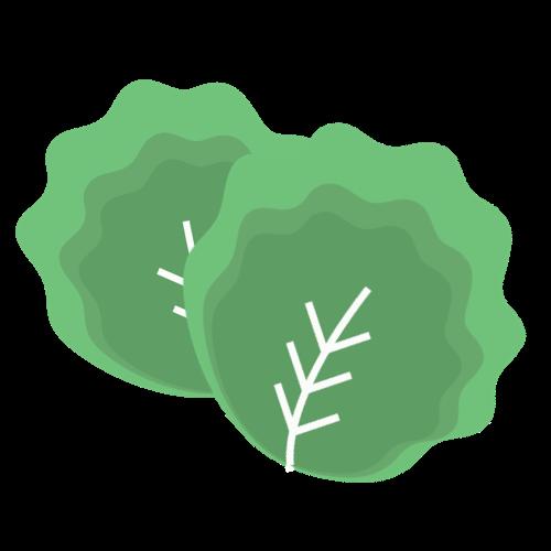 Kale brain food leafy greens