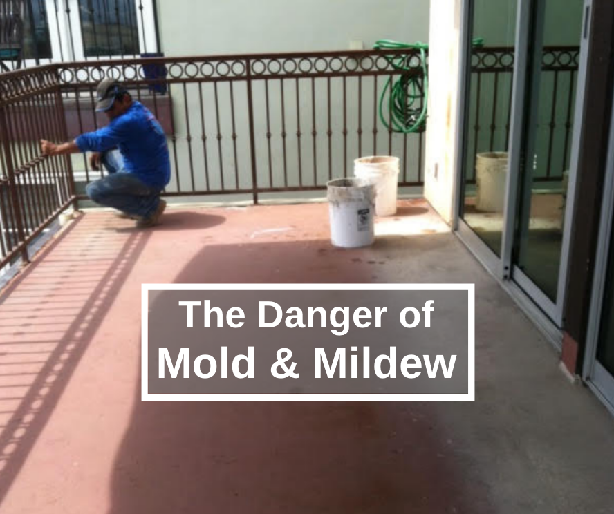 mold and mildew dangers to health