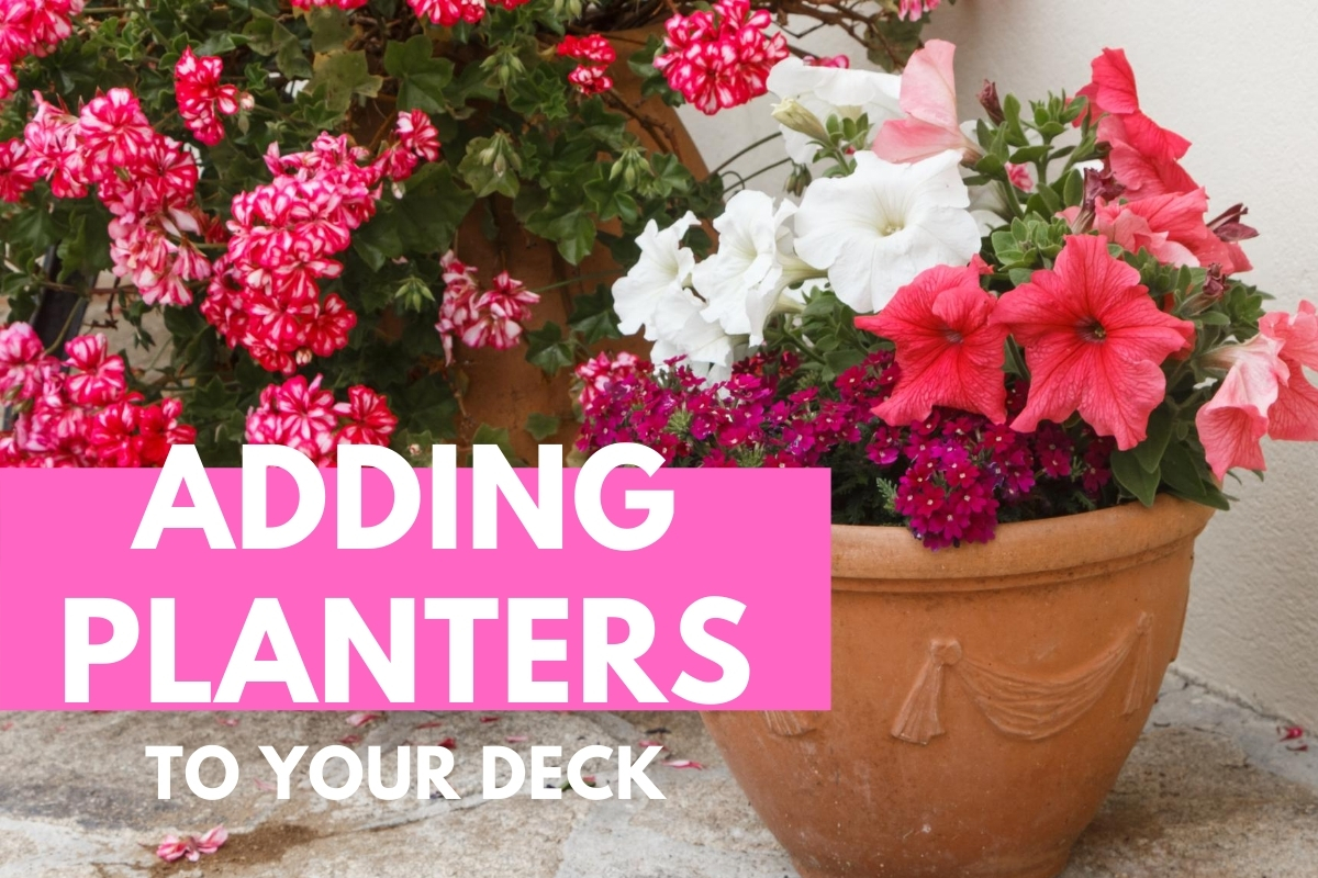 Outdoor flowers - Adding Planters to Your Deck