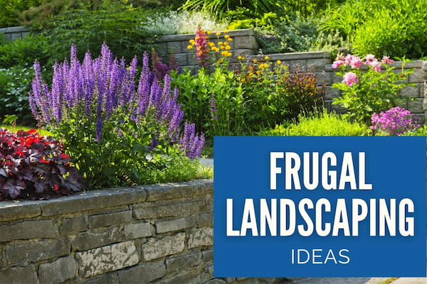 Beautiful Garden - Frugal Landscaping Ideas