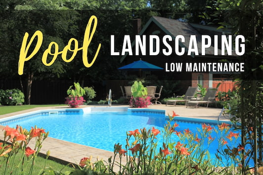 Pool Landscaping - Low Maintenance - Beautiful Backyard Pool