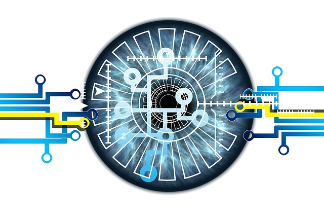 Eye Iris Biometrics - Image by Gerd Altmann from Pixabay