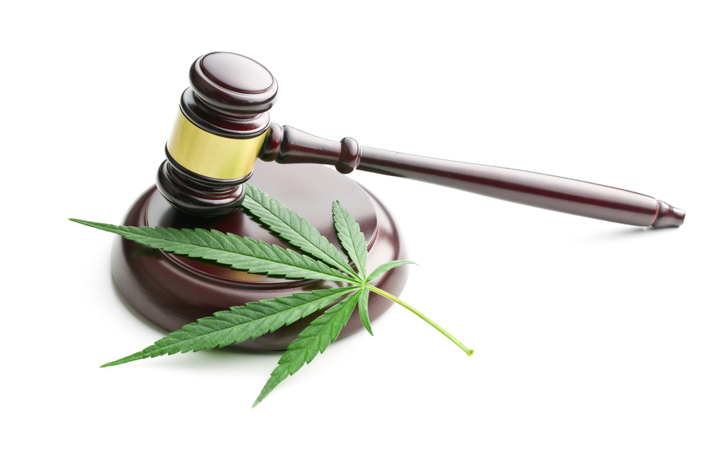 gavel and marijuana leaf