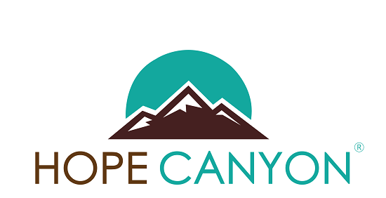 California Laws and Drug Treatment Programs   Hope Canyon