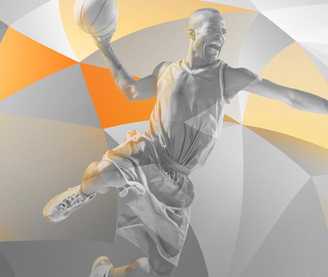 Ziggo Sport Basketball Grey Fractals