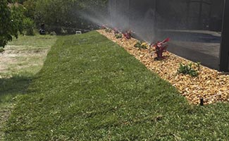 sod installation service in Cape Coral and Fort Myers Florida