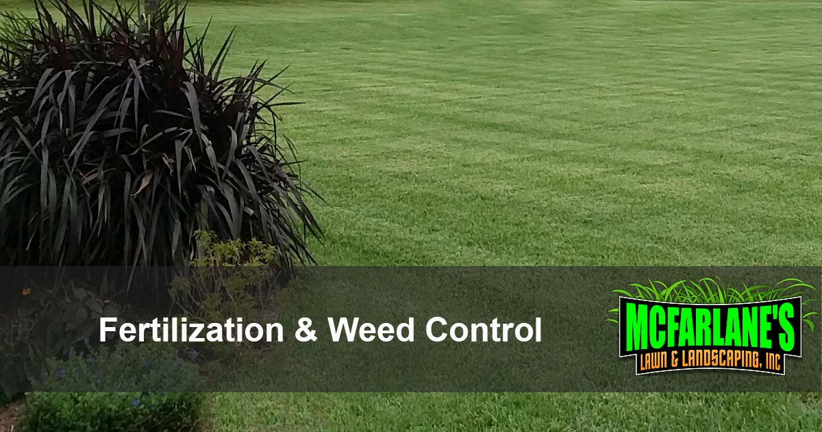Cape Coral and Fort Myers Fertlization and Weed Control