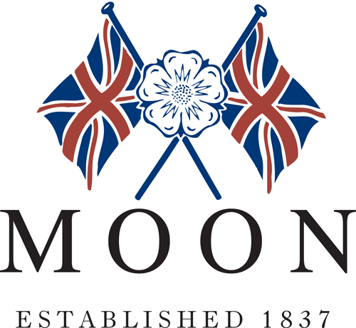 Moon website link