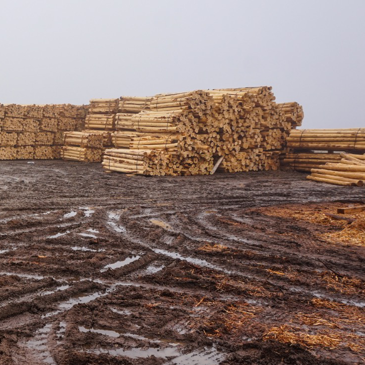 Pineview Cedar Products log yard
