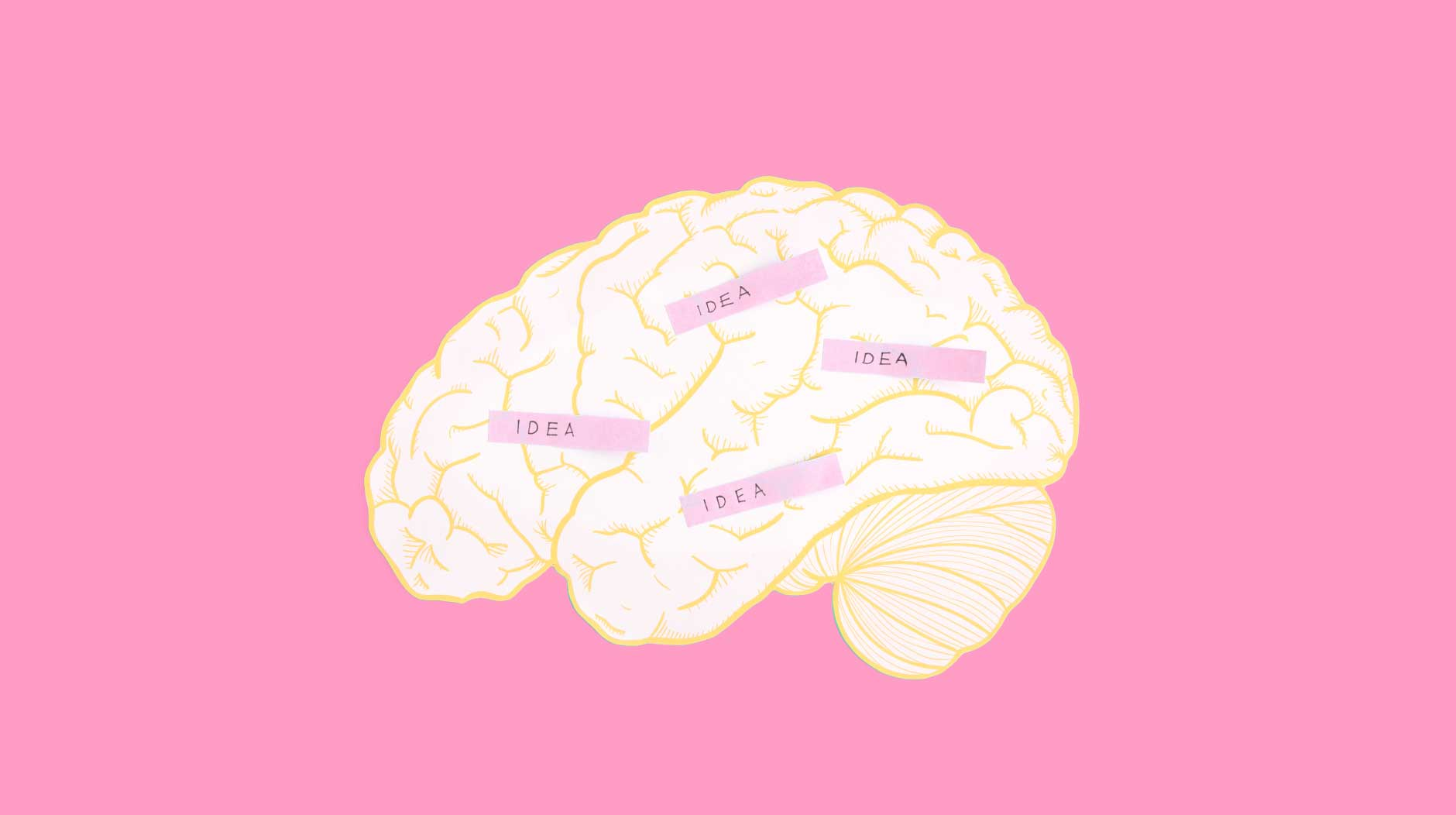 An image of brain on a pink background