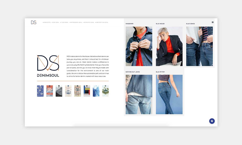 MDS Website Denim Concept Section