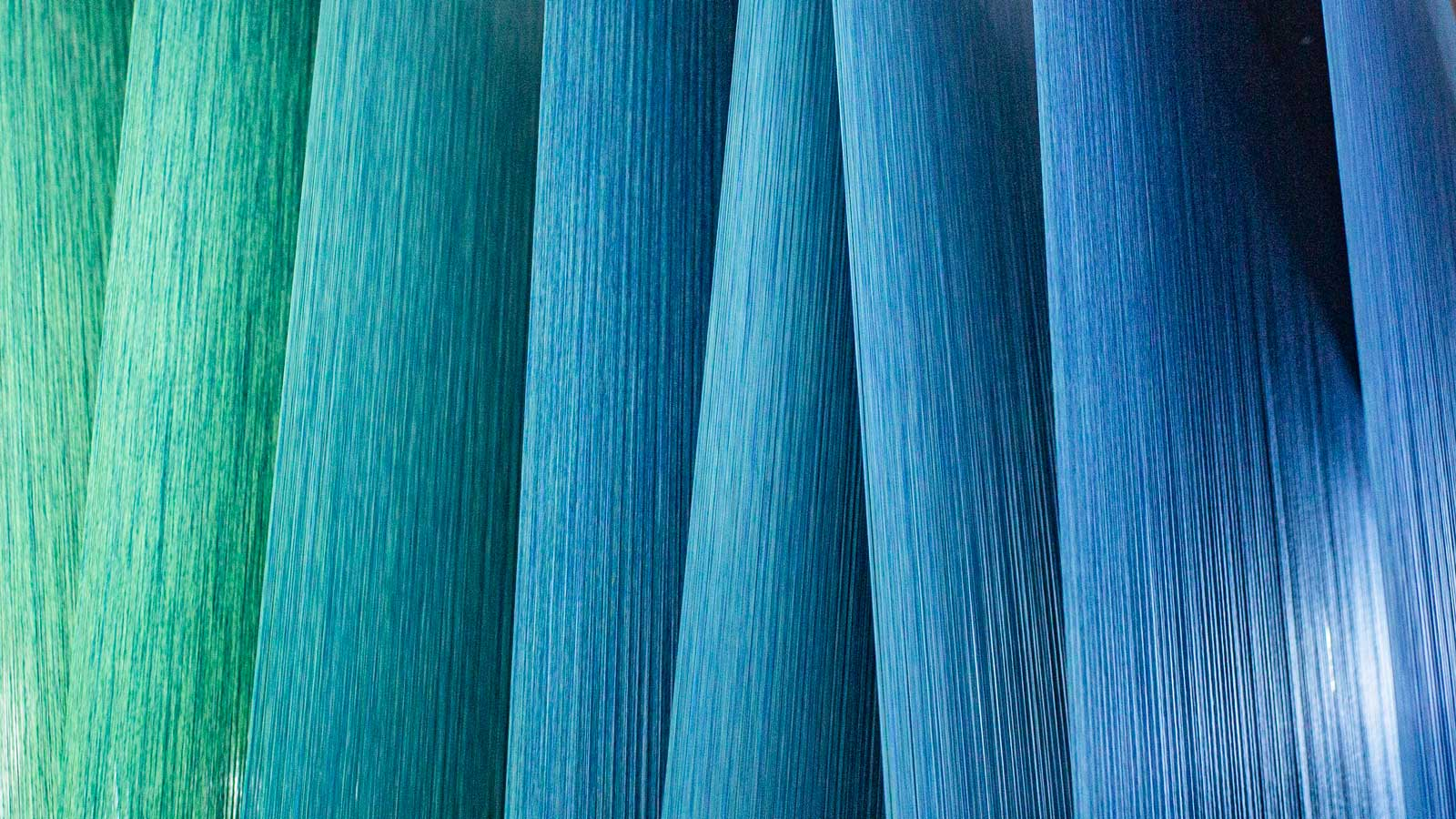 Green and blue gradient from yarns being dyed in indigo