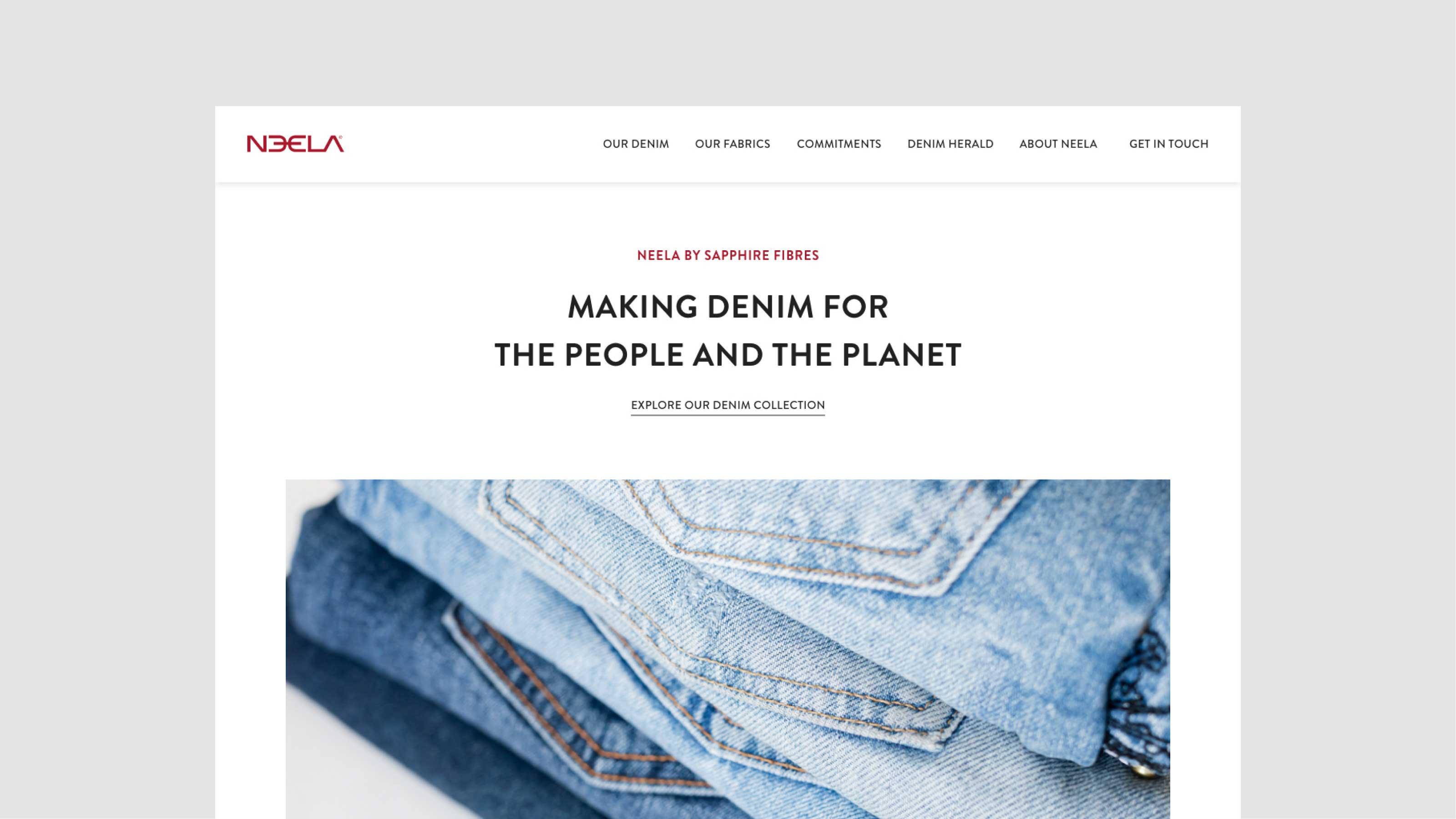 Neela Website Homepage