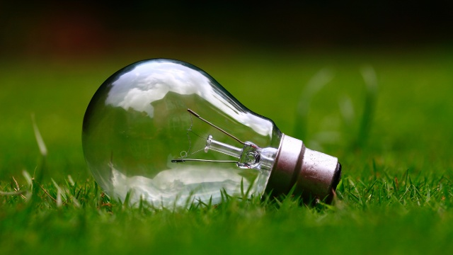 Light bulb lying in the grass