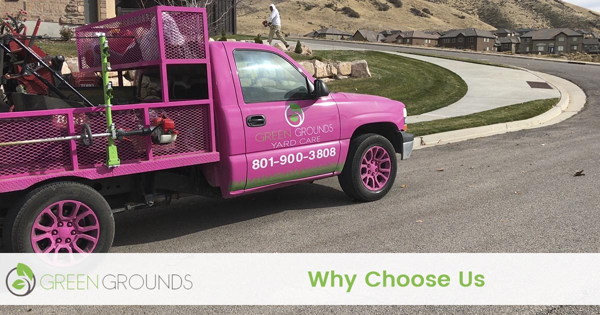 Why Choose Green Grounds Yard Care