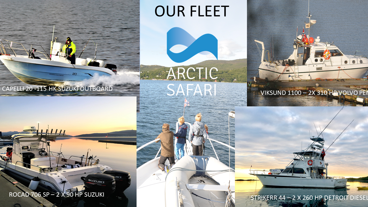 Our Fleet: Rocad 706, Viksund 1100, Striker 44