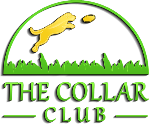 The Collar Club Logo