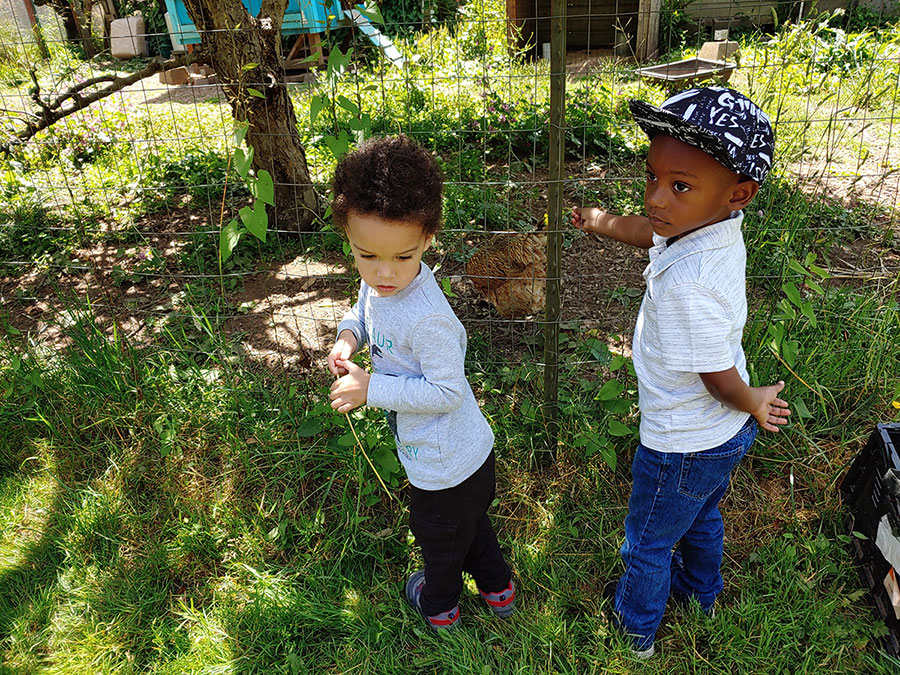 two children of color looking into the chicken yard