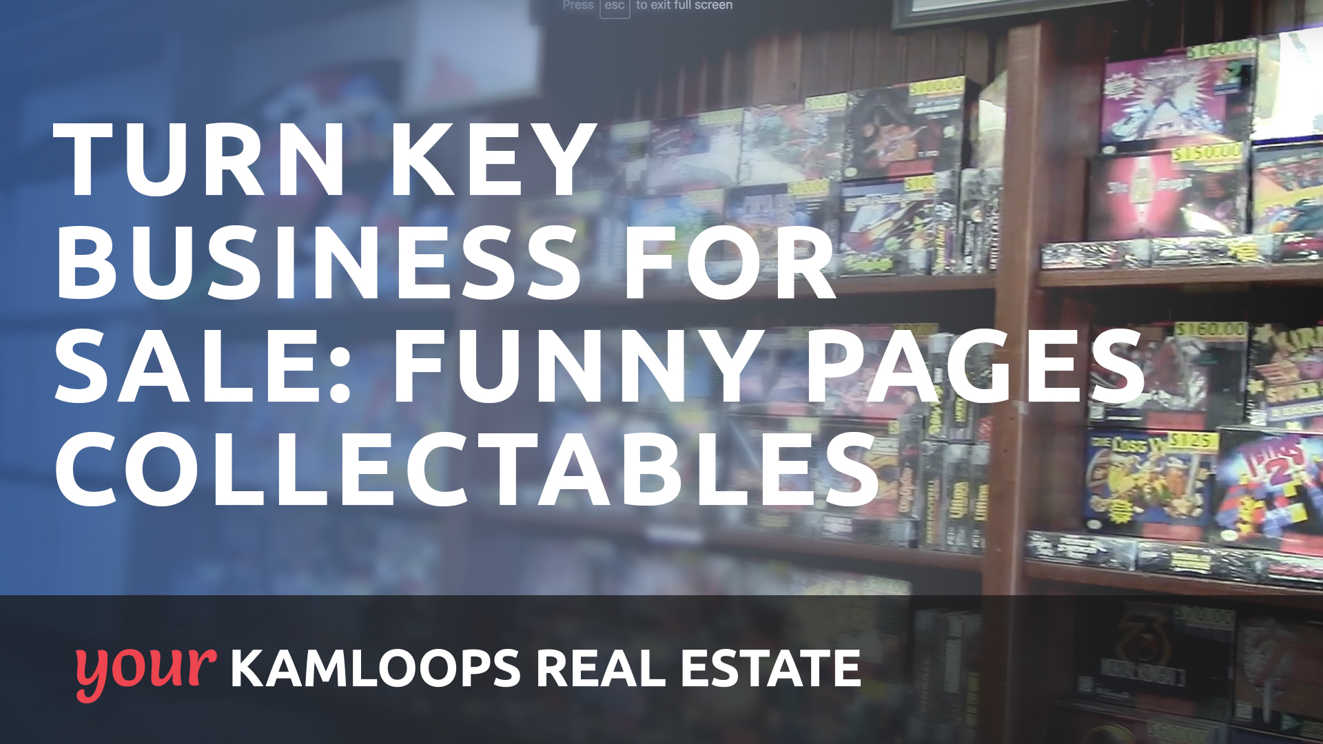 Turn Key Business for Sale: Funny Pages Collectables