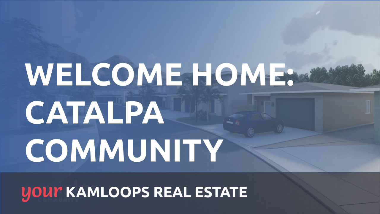 Welcome to Catalpa Community