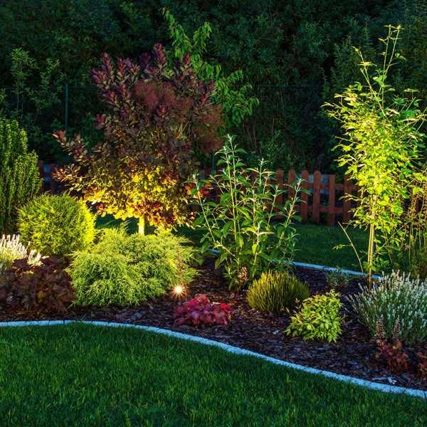 Landscape lighting installed by Bolt Electric
