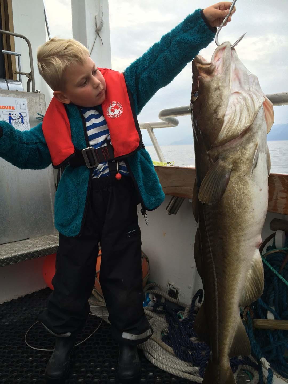 Unternehmen Sie mit «M/V BigFisher» eine schöne Angeltour in Tromsø