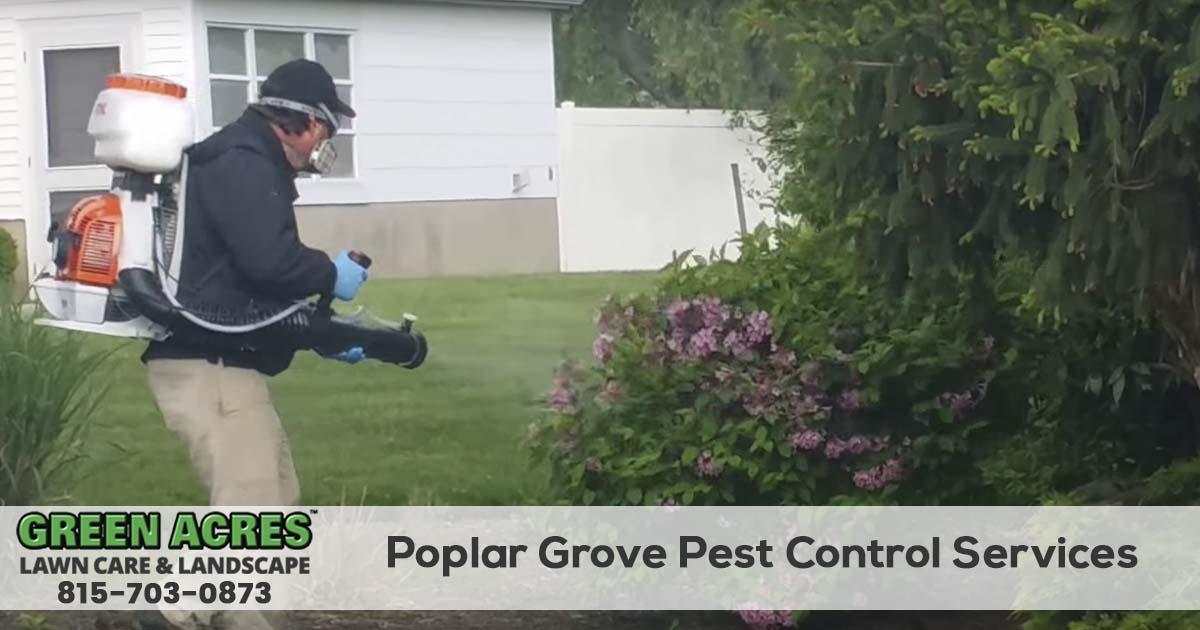 Poplar Grove Illinois Pest Control and Mosquito Company