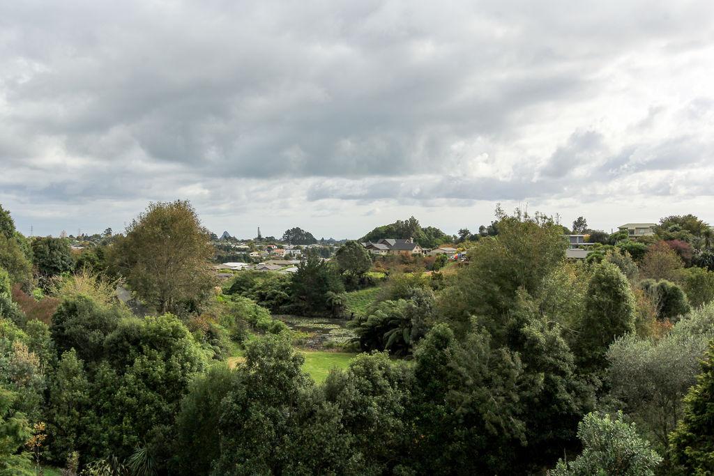 440 Mangorei Road - Highlands Park