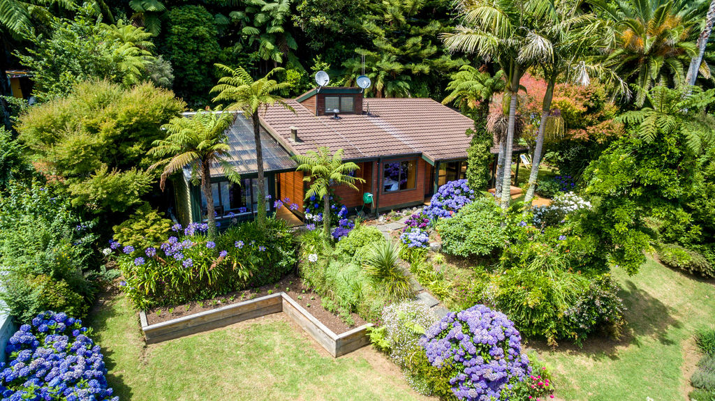 1 Kereru Place - Upper Vogeltown