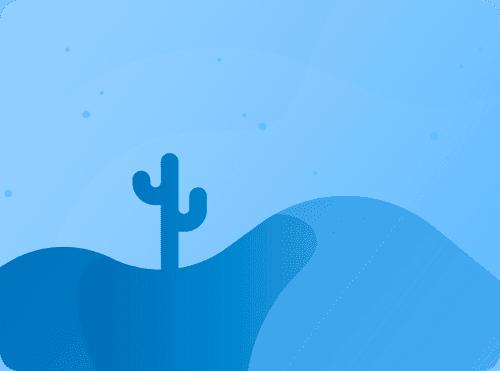 Blue Cactus Website Design Spring and Conroe Texas