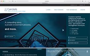 Emerson Ward Website Design Concept