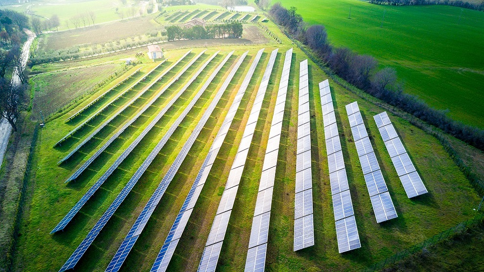 solar panels in large field