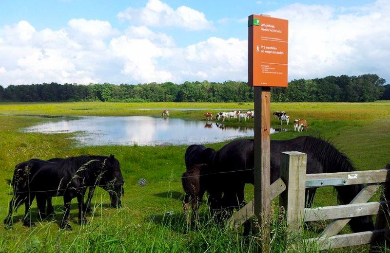 Diverse wandelroutes starten bij de Woeste Wieven op erve Bonkert in Diepenheim