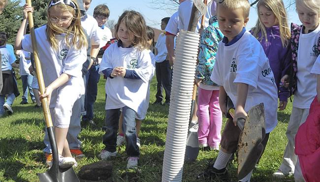 孩子们聚集在一棵树旁,用铲子铲土