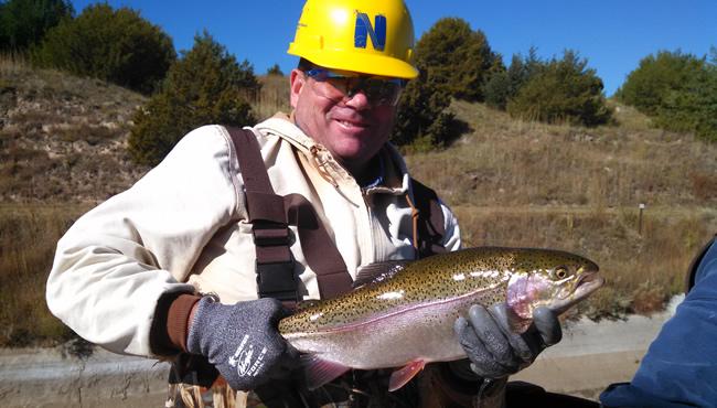 员工手里拿着一条虹鳟鱼